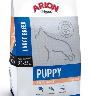 Arion puppy large salmon